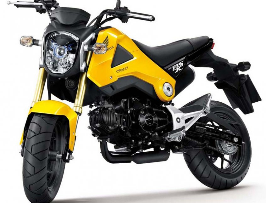 2014 Honda Grom Perfect Small City Motorcycle Welcome To Tech